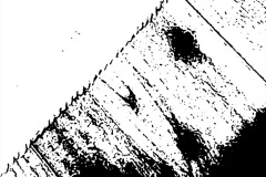 IMG_7629